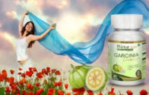Healthy Life Garcinia Cambogia -  composition - pas cher - avis